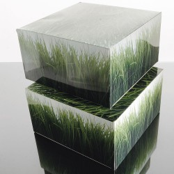 Set of 6 boxes grass decor