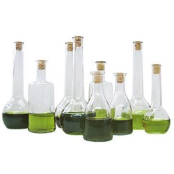 Oil - Set of 9 Bottles